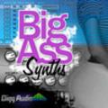 Thumbnail Big Ass Synths - REX/Rx2